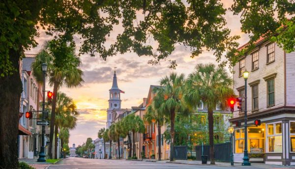 Palm tree lined city street